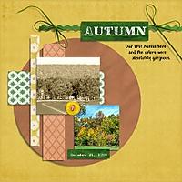Autumn_Colors_Oct_21_2009_500x500.jpg