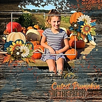 Awash_3_MF_and_Pumpkin_patch_kit_titles_and_clusters_by_LS.jpg