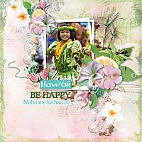 BDS_Hawaii3-klein.jpg