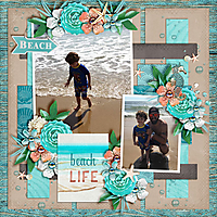 Beach-Life1.jpg