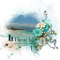 Beach-TD-070720.jpg