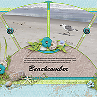 Beachcomber.jpg
