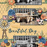 Beautiful_day10.jpg