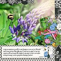 Bee_700_x_700_.jpg