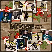 Beginner-Moose.jpg