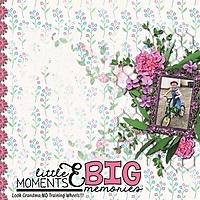 Big_Memories_med_-_1_1_.jpg