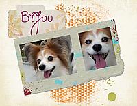 Bijou-07-23-17-_2.jpg