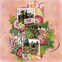Bloom-and-Grow5.jpg
