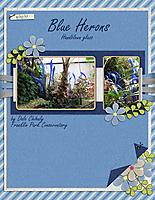 Blue-Herons.jpg