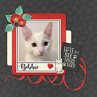 Bobbie-001_copy.jpg