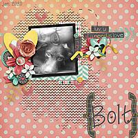 Bolt-2web.jpg