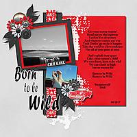 Born_to_be_Wild-001_copy.jpg