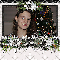 Brie_DecemberDramaSet2_sm.jpg