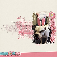Bunny_EarsWEB.jpg