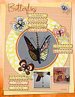 Butterflies11.jpg