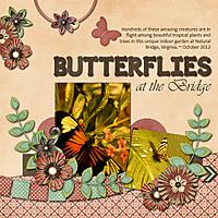 Butterflies_At_The_Bridge_copy.jpg