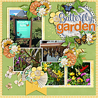 Butterfly-Garden3.jpg