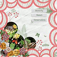ButterflyNatureConservatory.jpg