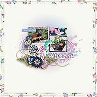 CG-blossom600.jpg
