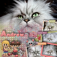 CT_Boomersgirl_Design_The_Cat_s_Meow_-_600_August_22_2017.jpg
