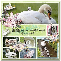 CT_Miss_Fish_2019_Book_4_-_Vac_alb_Wonderlust_9-12_with_JCD_serinity.jpg