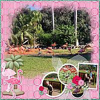 CT_SMALL_Simply_Stacked_43_Florida_Tgivs_BG_Flamingos_30.jpg