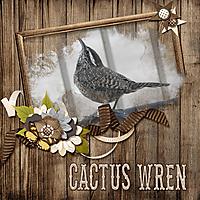Cactus_Wren_small.jpg