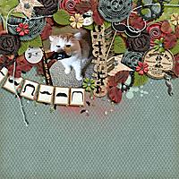 Catstache-web.jpg