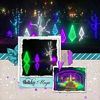 Cheekwood-lights.jpg