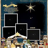 Christmas-Star-12-21-20-MFish_SimplyStacked_17-20_17-copy.jpg