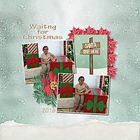 Christmas_Wonderland-001_copy.jpg