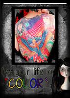 Color28.jpg