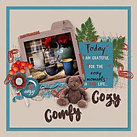 Comfy-Cozy.jpg