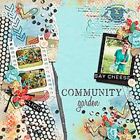 Community-BDnHT-060220.jpg