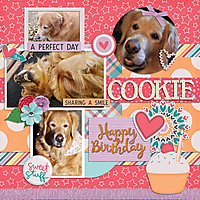 Cookie_sml_awhite_cloud_bday_020_6yo_aprilisa_sweet_stuff_Tinci_DTC1.jpg