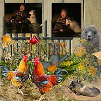 Country_copy.jpg