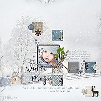 DBS-winter-magic-4Jan.jpg