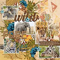 DSI-wild-and-free-9June.jpg