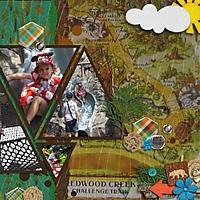 D_2008_Redwood_Creek_2_495x495_.jpg