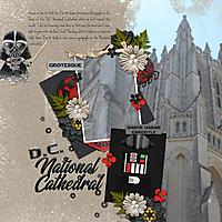 Darth600vadar-National-Cathedral-DT-BelieveInYou-temp1.jpg