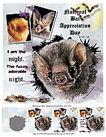 Day-5-National-Bat-Appreciation-Day.jpg
