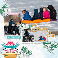 Dec-600sledding-DT-SpringSwing-temp4.jpg
