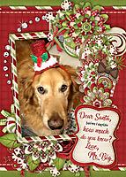 Dec_2019_xmas_sml_santa_explain_jss_boh_bb9.jpg