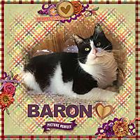 Dec_2020_Baron_Picture_Perfect_sml_JBS_fallinginlove_solid4.jpg