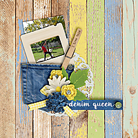 Denim-_-Daisies-Page-Kit-By-Magical-Scraps-Galore.jpg