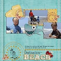 Destination_Beach_coliescorner_sm_copy.jpg