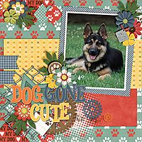 Dog-Gone-Cute1.jpg