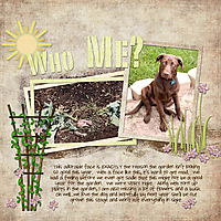 Dog-in-GardenWEB.jpg