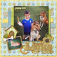 Dogs_littleman-O.jpg