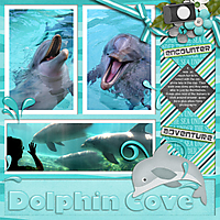 Dolphin-Cove-template-cap-june.jpg